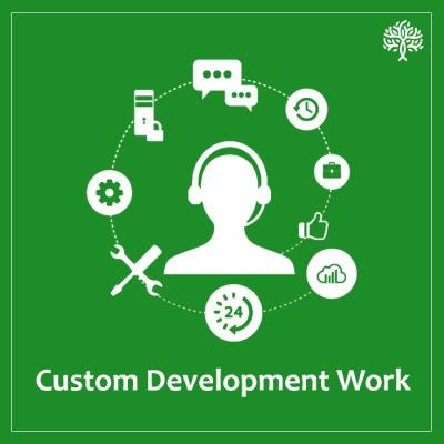 Custom Development Work